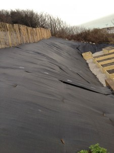2012-East-Cliff-Project-(2)